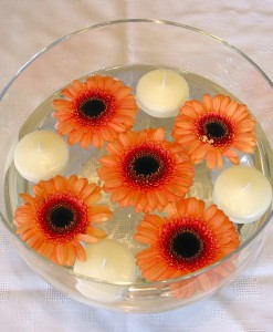 Wedding Package - Gerbera Collection