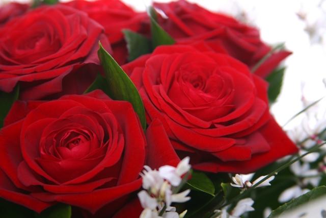 Red roses - The Cornflower floral design Warminster