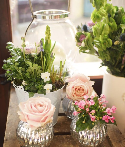 Gift Occasion – Springtime  Planted Arrangements