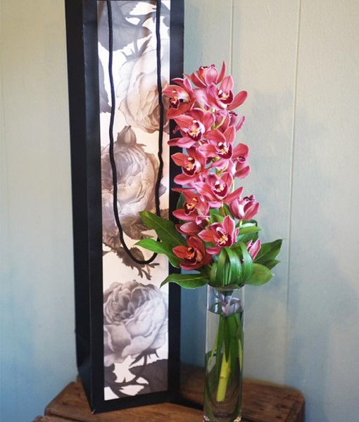 valentines-day-secret-admirer-orchid