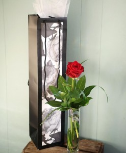 valentines-day-secret-admirer-rose