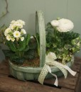 Springtime Planter - The Cornflower Floral Design