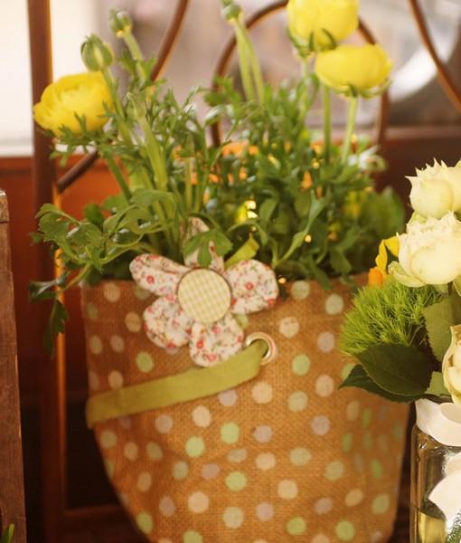 Gift Occasion – Ranunculus Plant