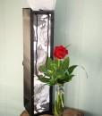 valentines-day-secret-admirer-rose