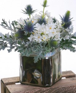frosty-morning-paperwhites-in-mirror-vase-the-cornflower